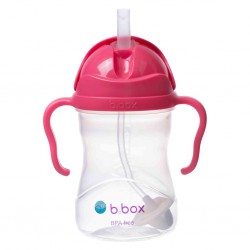 Bbox Sippy Cup with Replacement Straw 240 ml -...