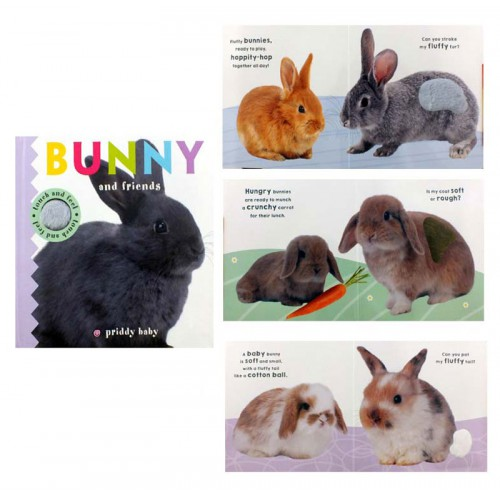 Priddy Books Touch And Feel - Bunny And Friends