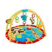 Karpet, Baby Gym & Playmat