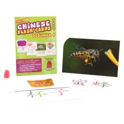 Wink To Learn Flash Card Chinese - Beginner 4
